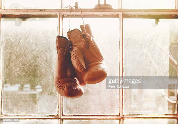 boxing gloves hanging on window - boxing gloves stock photos and pictures