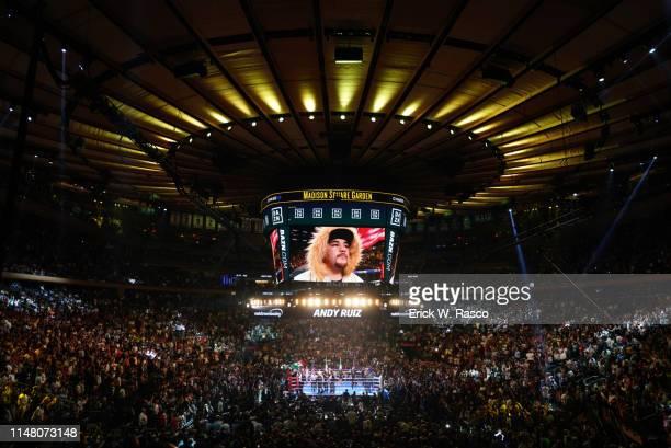 IBF / IBO / WBA / WBO Heavyweight Title View of Madison Square Garden scoreboard during introduction of Andy Ruiz Jr before fight vs Anthony Joshua...