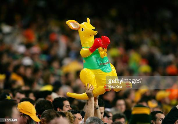 A boxing kangaroo is held in the crowd during the International friendly football match between Australia and the Netherlands at Sydney Football...