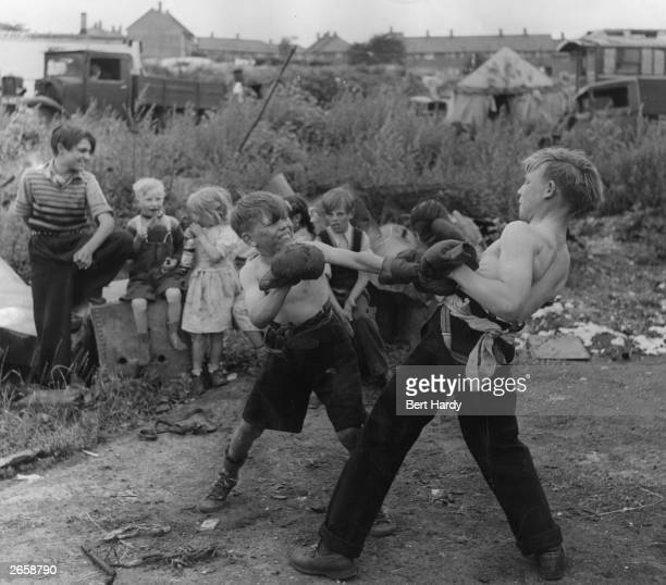 A boxing match in progress between two gypsy boys on the Corke's Meadow encampment in Kent Original Publication Picture Post 5363 The Unromantic...