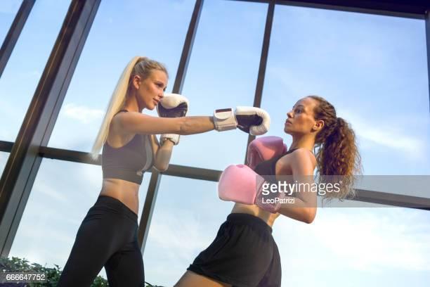 boxe formation plein air - sport concepts - deux femmes amis travaillant - combat sport photos et images de collection