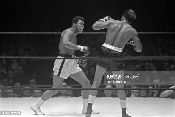 WBA World Heavyweight Title Muhammad Ali in action vs Cleveland Williams at Astrodome Houston TX CREDIT Don Uhrbrock