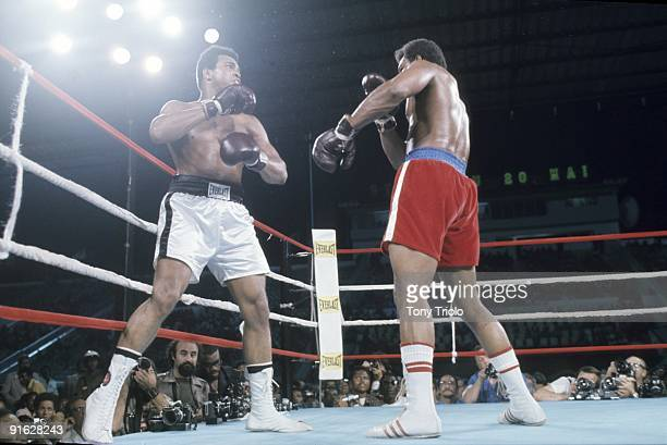 Heavyweight Title: Muhammad Ali in action vs George Foreman at 20th of May Stadium. Kinshasa, Zaire CREDIT: Tony Triolo