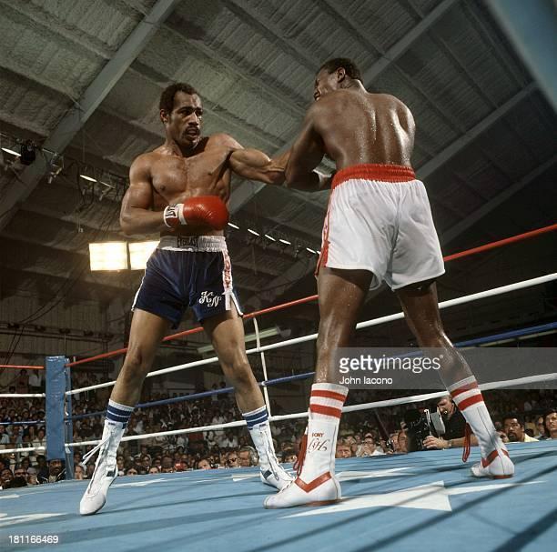 WBC Heavyweight Title Ken Norton in action vs Larry Holmes at Caesars Palace Las Vegas NV CREDIT John Iacono