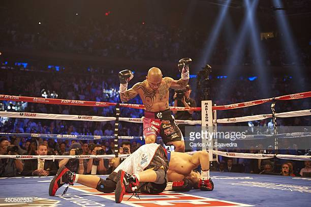 WBC Middleweight Title Miguel Cotto victorious after knocking down Sergio Martinez at Madison Square Garden New York NY CREDIT Carlos M Saavedra