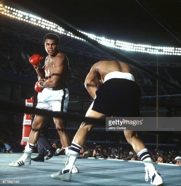 WBC/ WBA Heavyweight Title Muhammad Ali in action vs Ken Norton at Yankee Stadium Bronx NY CREDIT Jerry Cooke