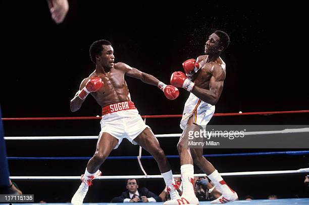 WBC/ WBA Welterweight Title Sugar Ray Leonard in action vs Thomas Hearns at Caesars Palace Las Vegas NV CREDIT Manny Millan