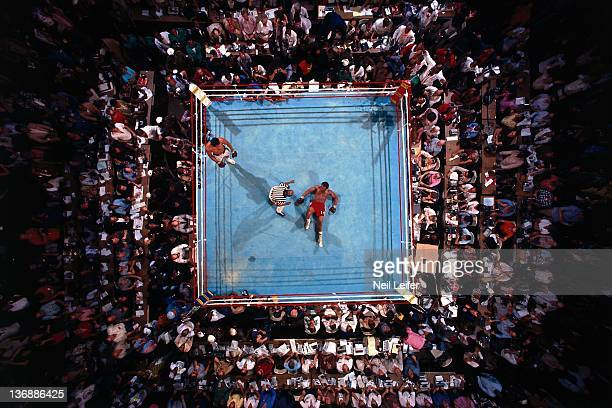 Boxing WBC/ WBA World Heavyweight Title Aerial view of George Foreman on canvas during count by referee Zach Clayton after round 8 knockout by...