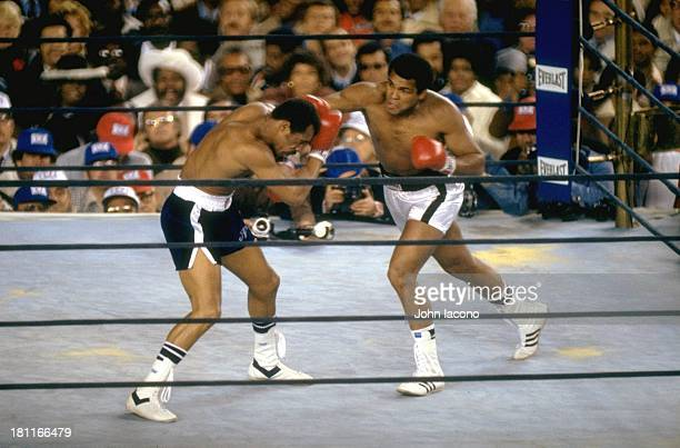WBC/ WBA World Heavyweight Title Muhammad Ali in action vs Ken Norton at Yankee Stadium Bronx NY CREDIT John Iacono