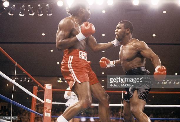WBC/WBA/IBF Heavyweight Title Mike Tyson in action vs Tony Tucker at Hotel Hilton Las Vegas NV 8/1/1987 CREDIT Richard Mackson