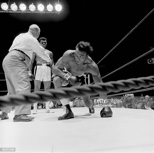 World Heavyweight Title Cleveland Williams getting up from canvas after knockdown by Muhammad Ali at Astrodome View of referee Harry Kessler Houston...
