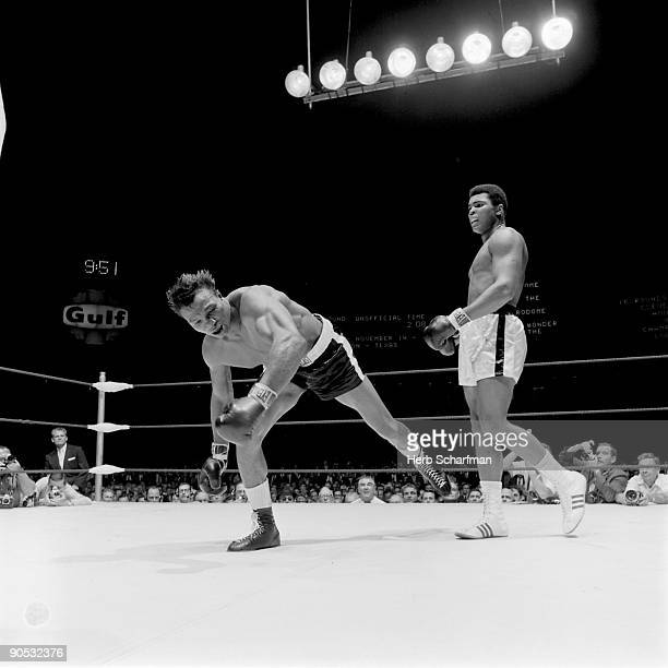 World Heavyweight Title Muhammad Ali watching Cleveland Williams during knockdown at Astrodome Houston TX CREDIT Herb Scharfman