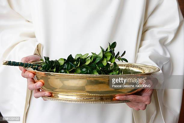 Boxwood Branch Used for Blessing