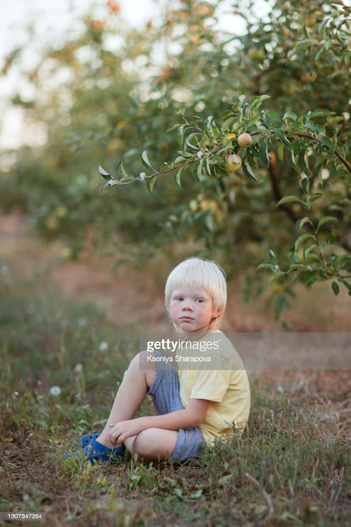 Boy 45 Years Old Walking In Apple Orchard Stock Photo Foto