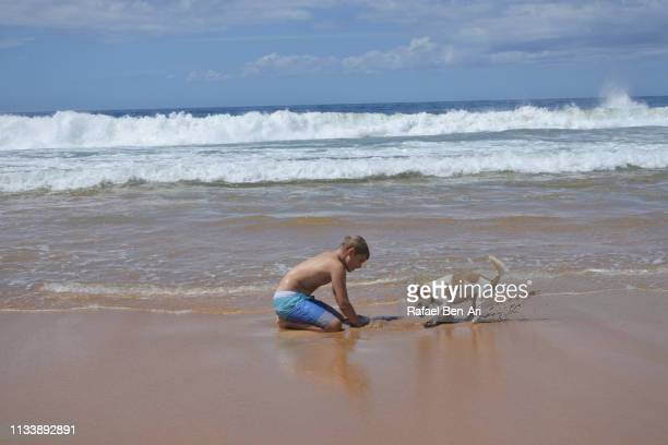 Boy and a dog digging a hole in sand