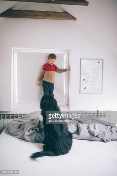 Garçon et son chien