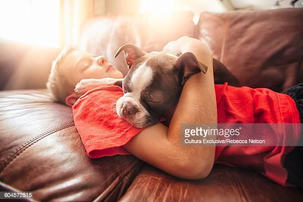 Boy and boston terrier pup asleep on sofa