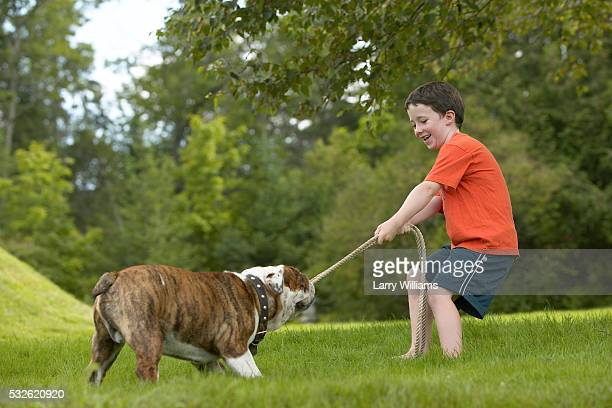 Boy and Bulldog Playing with Rope Outdoors