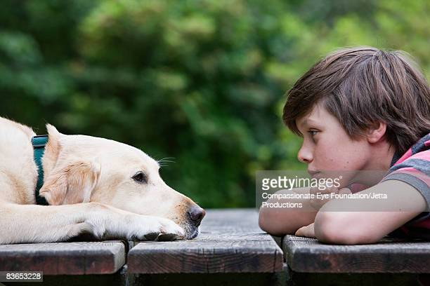 Boy and dog looking eye to across a picnic table