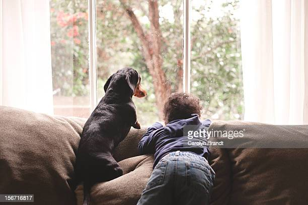Boy and Dog looking out window together