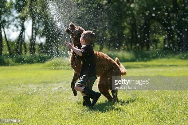 Boy and dog running through sprinkler