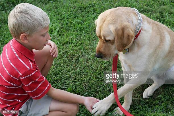 boy and dog shake