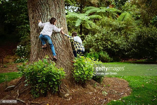 Boy and girl climb tree