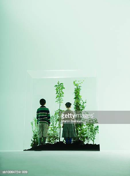 Boy and girl (4-7) looking at plants in glass cabinet, rear view