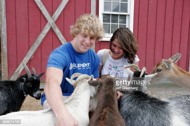 A boy and girl petting goats at Peninsula SPCA Petting Zoo