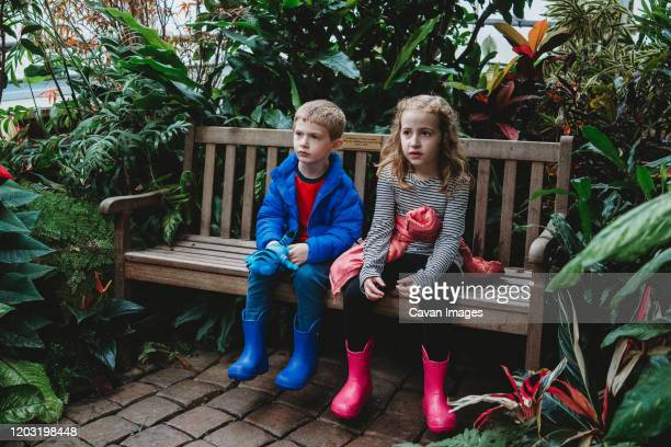 a boy and girl sit on a bench in a greenhouse. - 植物園 ストックフォトと画像