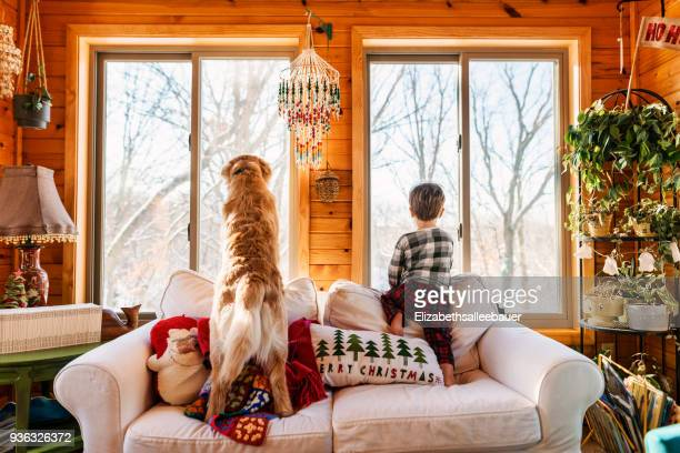 boy and golden retriever dog standing on couch looking out of the window - close to stock pictures, royalty-free photos & images