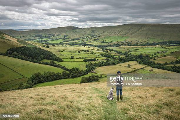 A boy and his dog enjoying the view