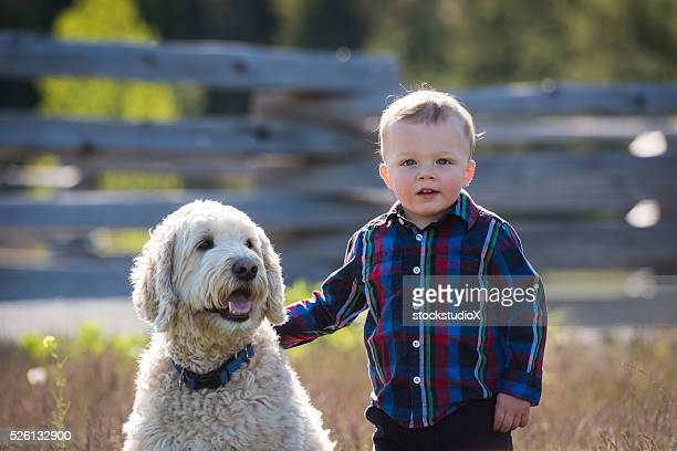 boy and his dog - labradoodle stock photos and pictures