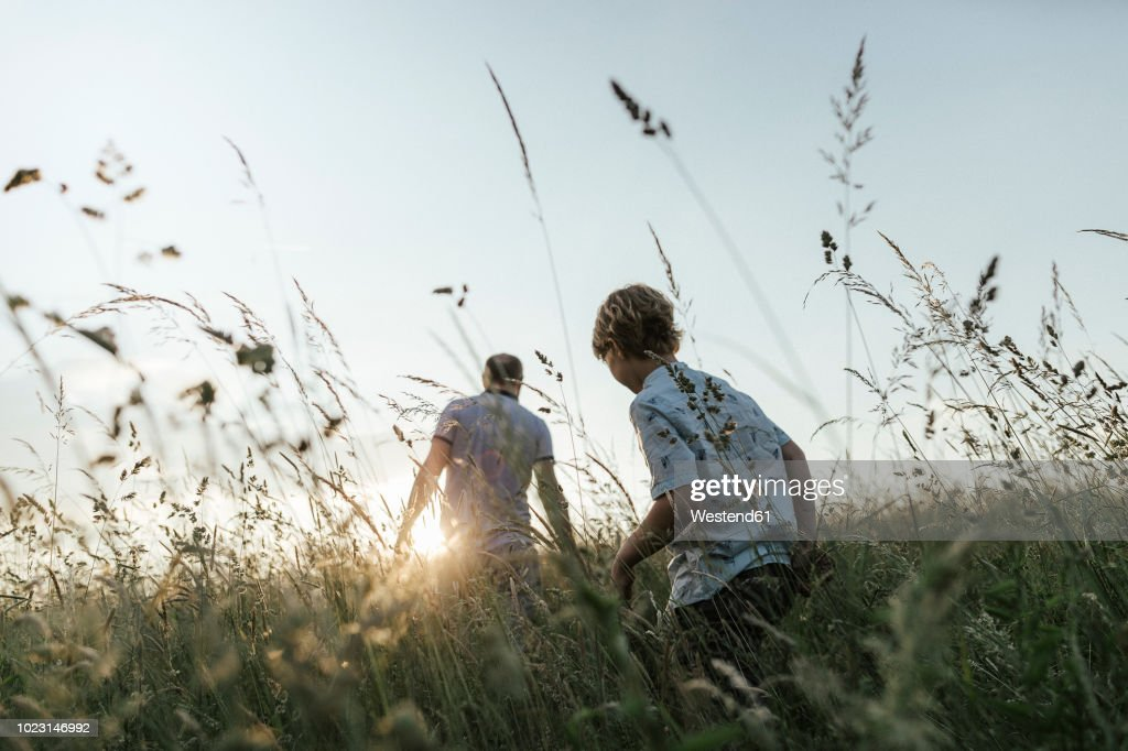 Boy and his father walking in nature at sunset : Stock-Foto