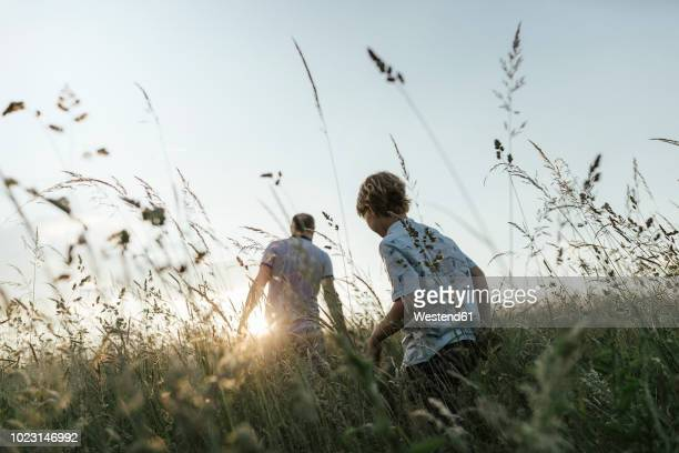 boy and his father walking in nature at sunset - land stock-fotos und bilder