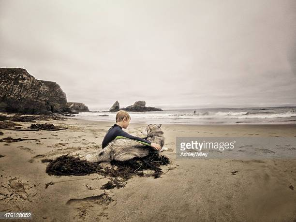Boy and his Siberian Husky dog sitting on a beach