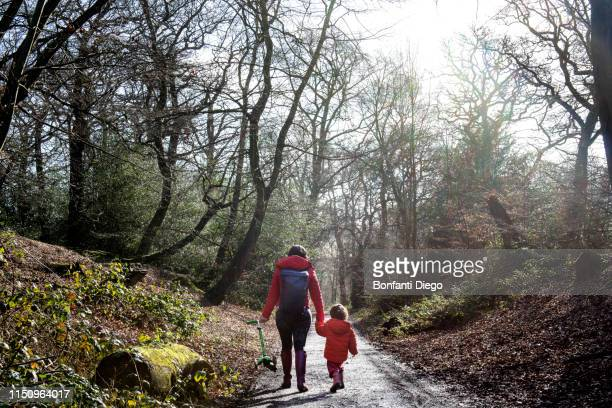 boy and mother walking along woodland road, rear view - forest stock pictures, royalty-free photos & images