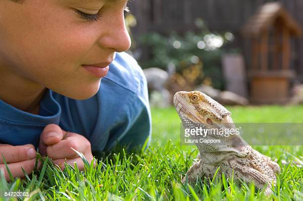 boy and pet lizard looking at each other on grass - exotic pets stock pictures, royalty-free photos & images