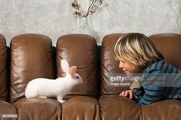 Boy and rabbit