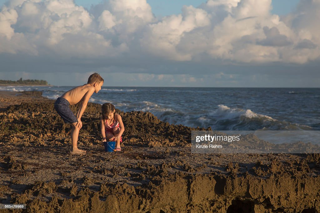 Boy and sister playing with toy bucket on beach, Blowing Rocks Preserve, Jupiter Island, Florida, USA : Stock Photo