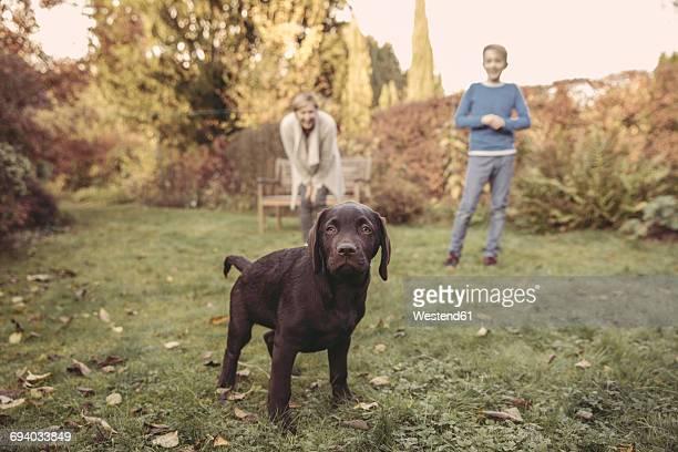 Boy and woman with Labrador Retriever in garden