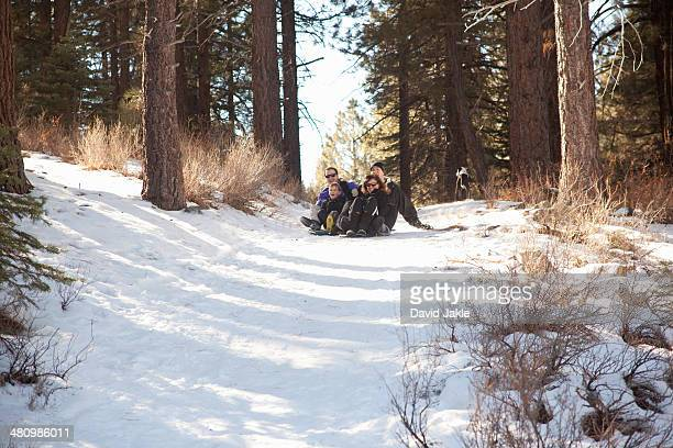 Boy and young adults sledging in snowy forest