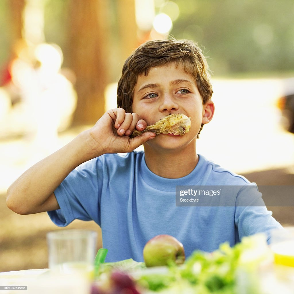 boy (9-10) at a picnic eating a chicken drumstick : Stock Photo