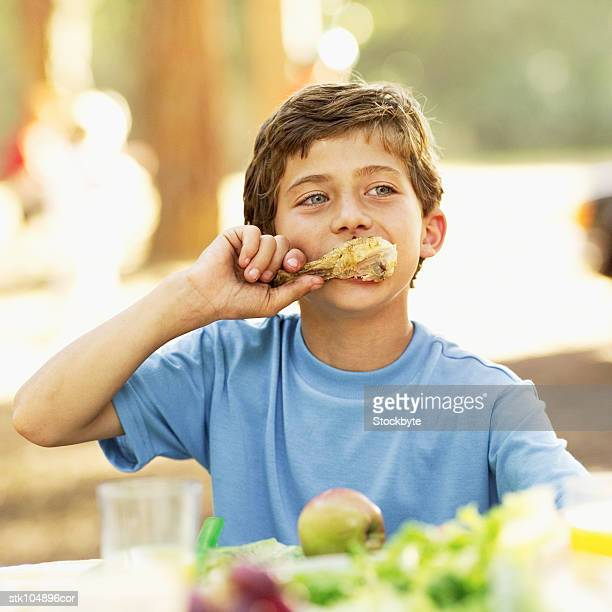 boy (9-10) at a picnic eating a chicken drumstick