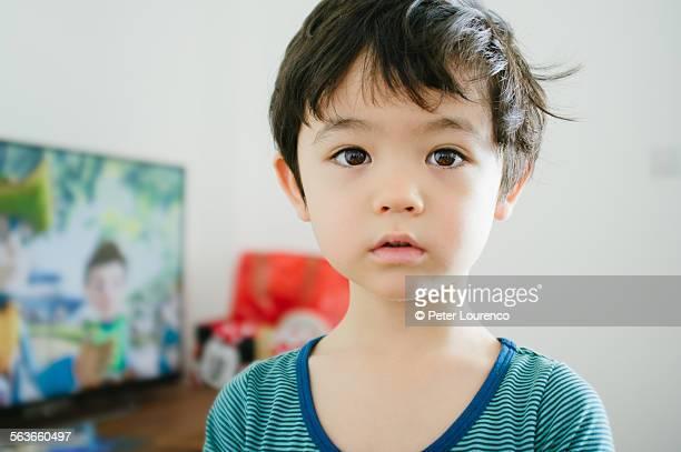 boy at home - peter lourenco stock-fotos und bilder