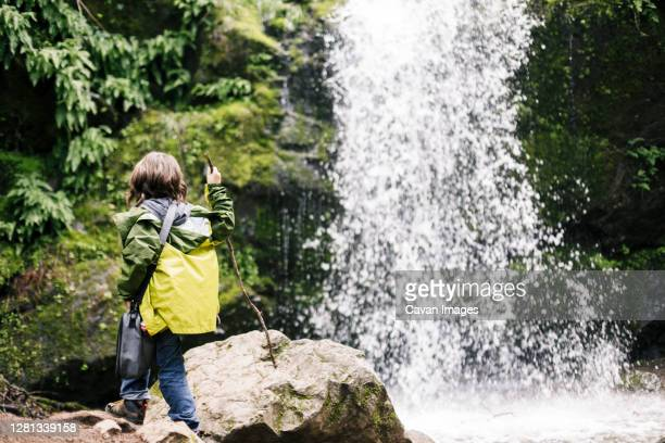 boy at the end of hiking standing looking waterfall at green forest - petaluma stock pictures, royalty-free photos & images