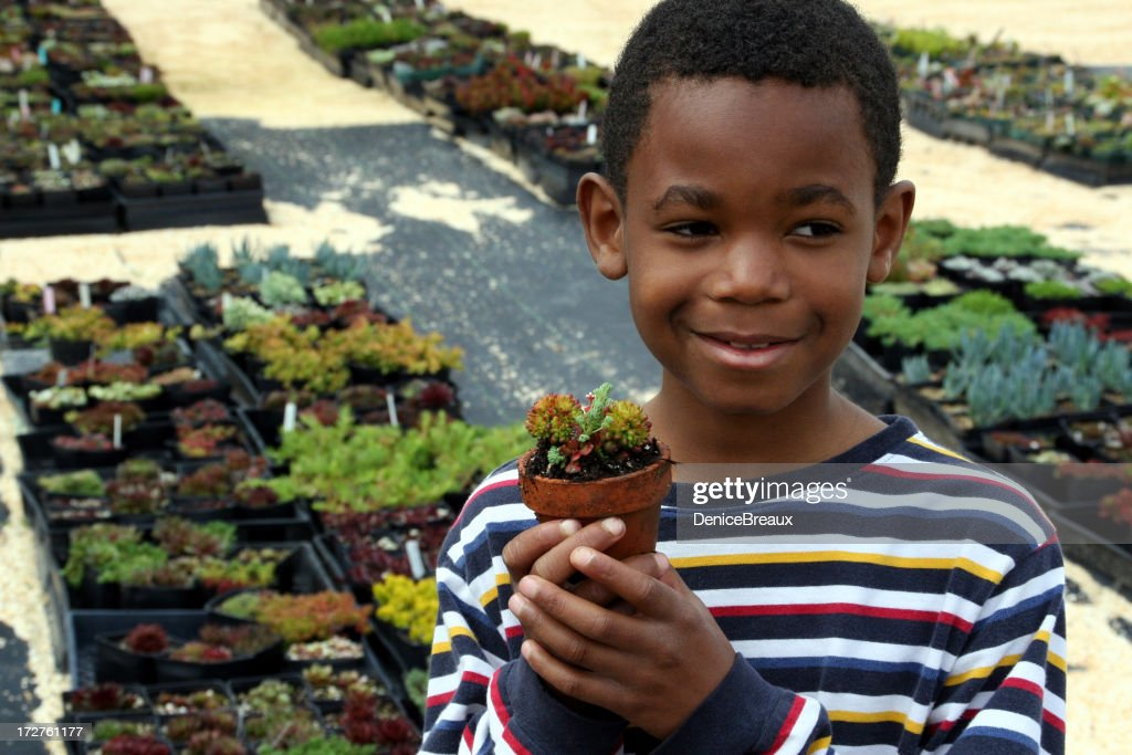 Boy at the Nursery : Stock Photo