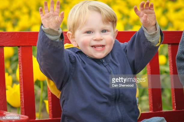 Boy at Wooden Shoe Tulip Farm - Woodburn, Oregon