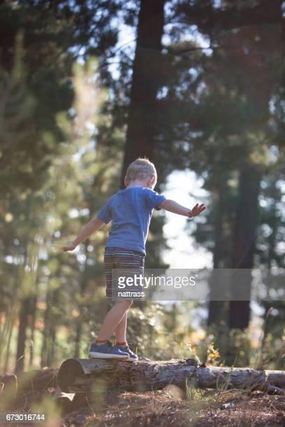 Jongen balanceren op een omgevallen boom stomp in het bos