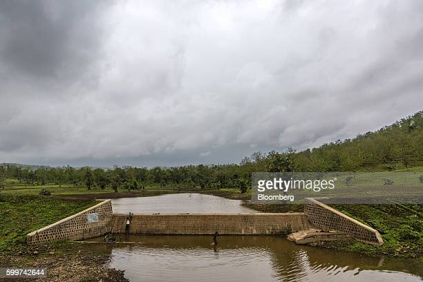 A boy bathes in a manmade irrigation pond that stores rain water in Dewas Madhya Pradesh India on Monday July 4 2016 Farmers in Dewas district where...